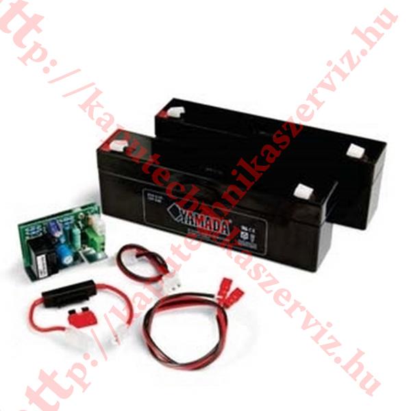 Ditec NES 100BBU Neos kapunyitó akkumulátor szett - kaputechnikaszerviz.hu